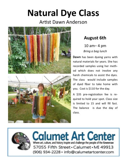Dawn Anderson dye class